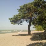 Polska scena Plaża w Colchester, Lake Erie - Essex, ON