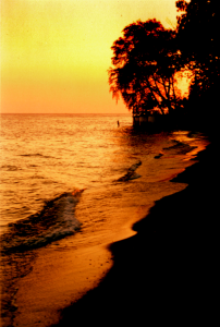 Polish Beach sunset scene in Colchester, Lake Erie - Essex, ON